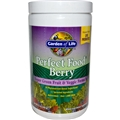 Garden of Life Perfect Food Berry, 30 Servings, Organic